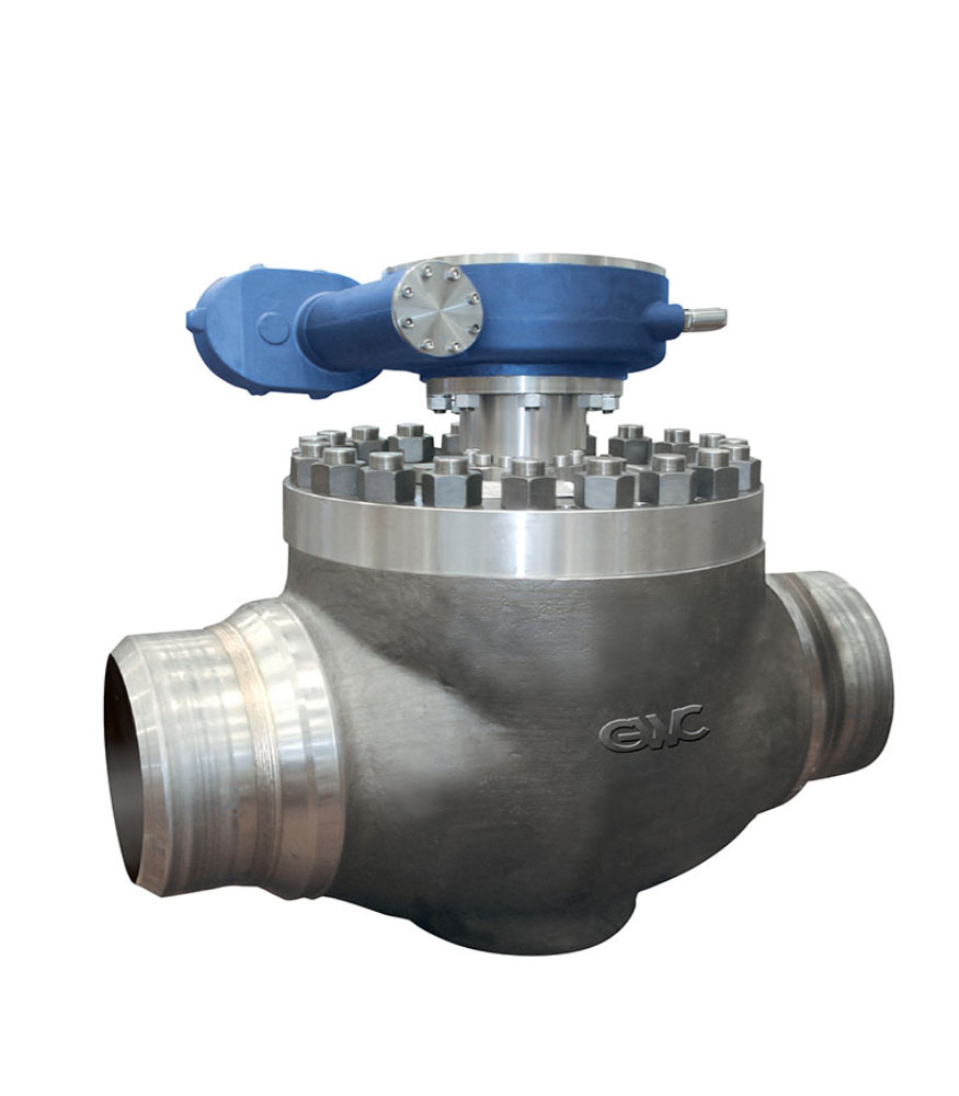 One piece Body TRUNNION Mounted Ball Valves Top Entry